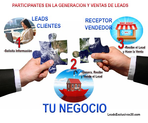 Como estudiar en Curso Integral de Marketing Online. Generacion de leads. Dolphy School